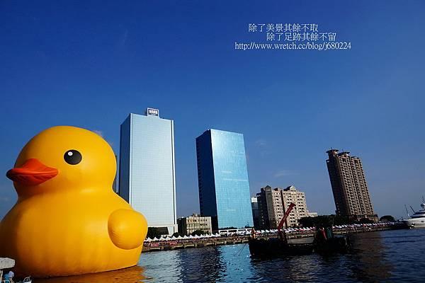 黃色小鴨 (28)