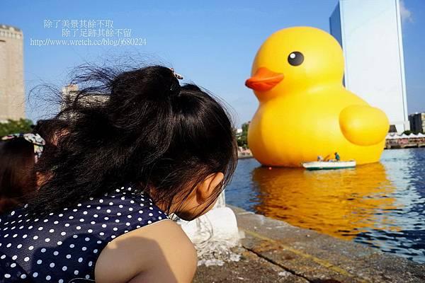 黃色小鴨 (33)