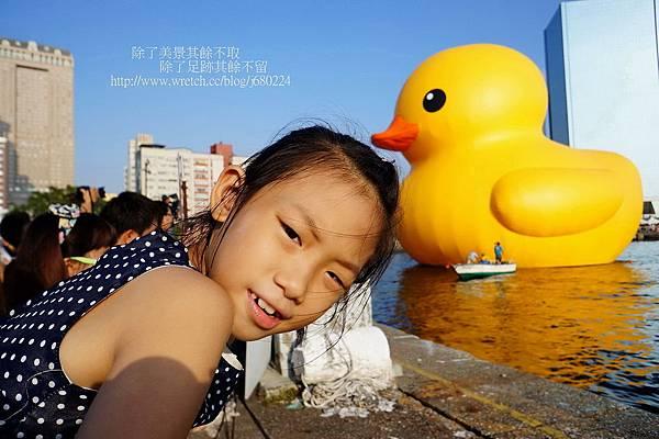 黃色小鴨 (34)