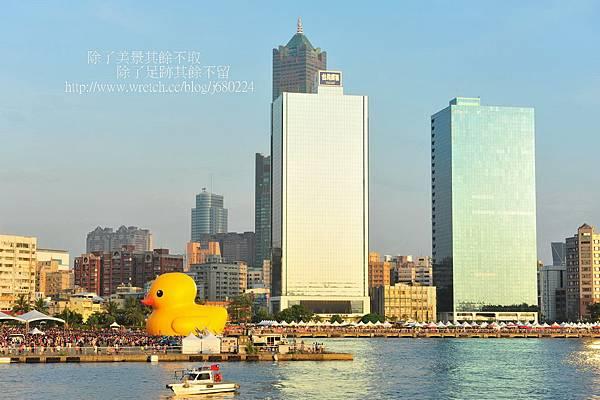 黃色小鴨 (74)