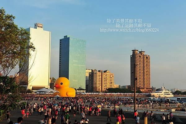 黃色小鴨 (77)