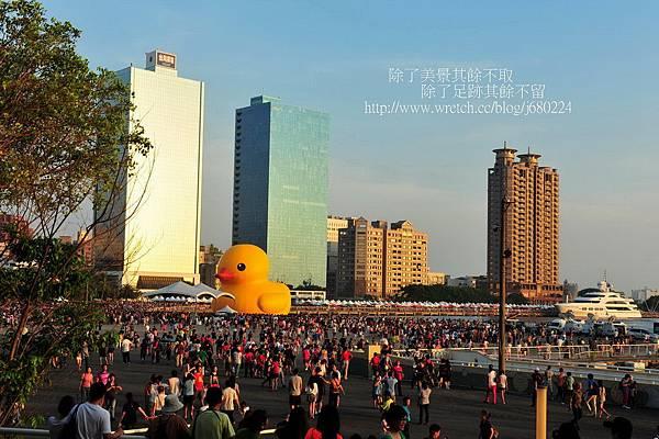 黃色小鴨 (78)