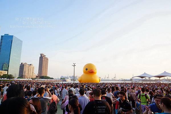 黃色小鴨 (83)