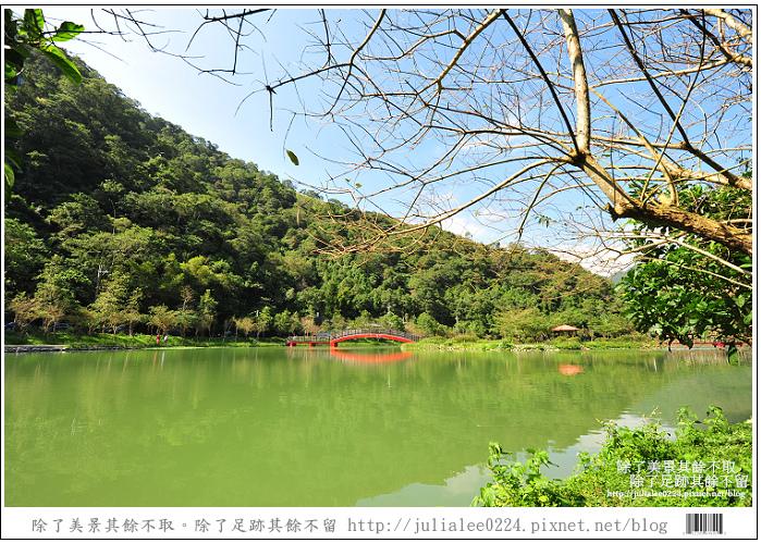 望龍埤 (48).jpg