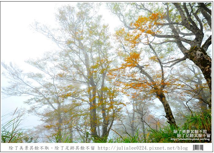 DSC_6776.jpg