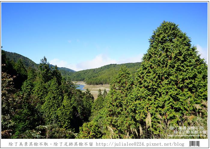 山毛櫸步道 (1).jpg