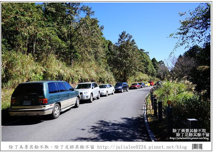 山毛櫸步道 (4).jpg