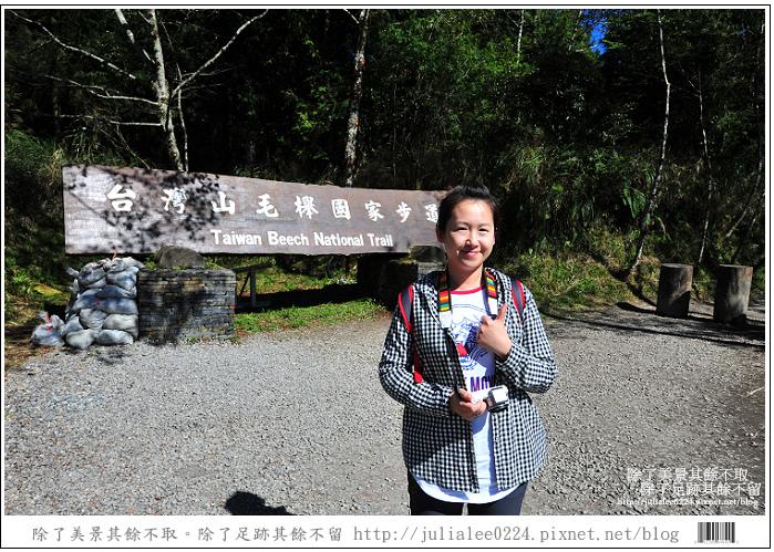 山毛櫸步道 (8).jpg