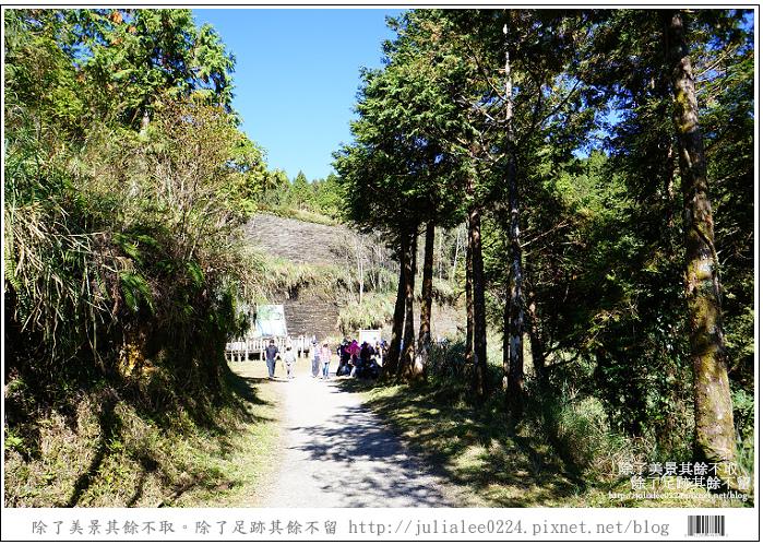 山毛櫸步道 (25).jpg