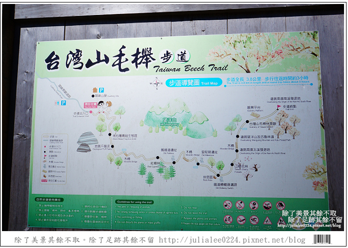 山毛櫸步道 (29).jpg
