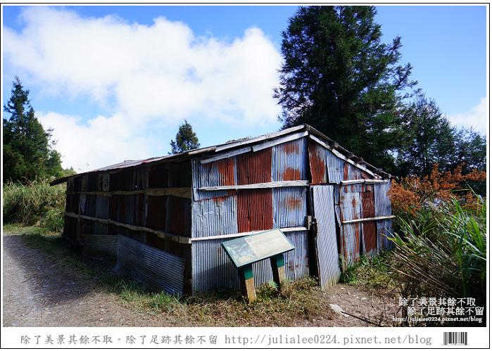 山毛櫸步道 (37).jpg
