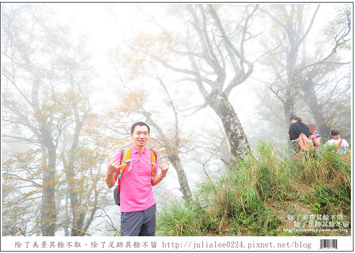 山毛櫸步道 (60).jpg