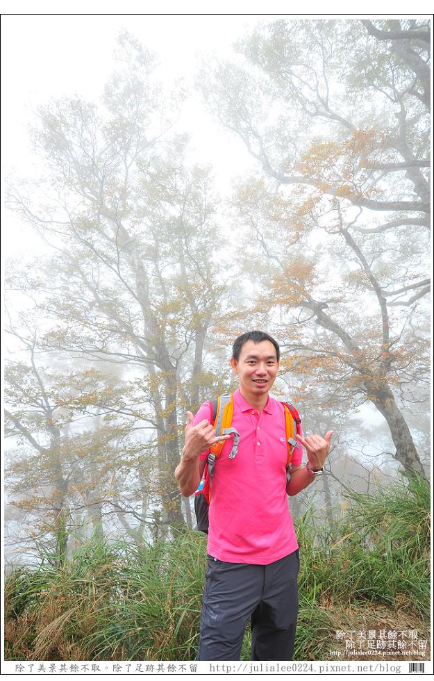山毛櫸步道 (62).jpg