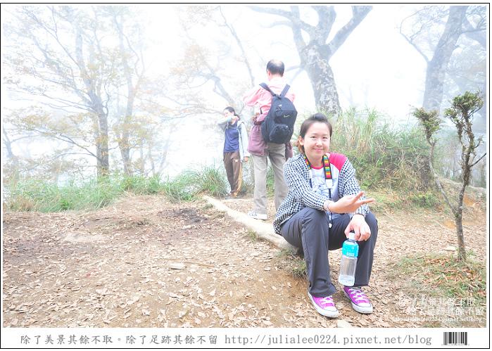 山毛櫸步道 (81).jpg