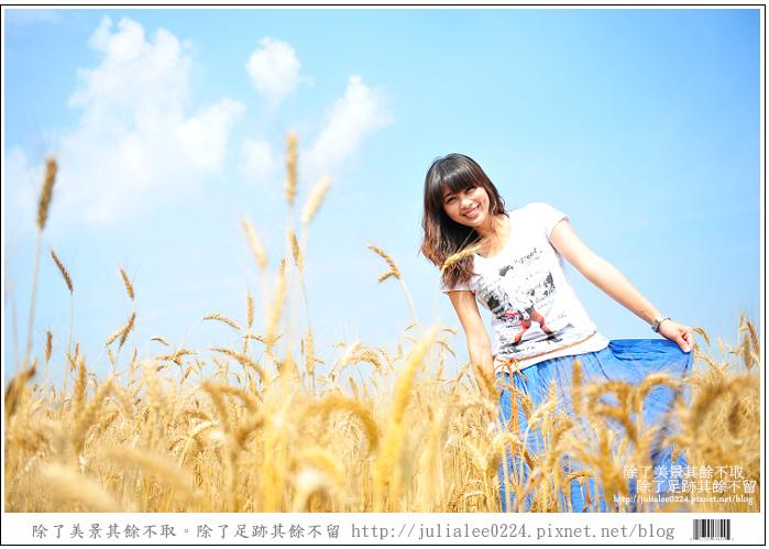 DSC_1538.jpg