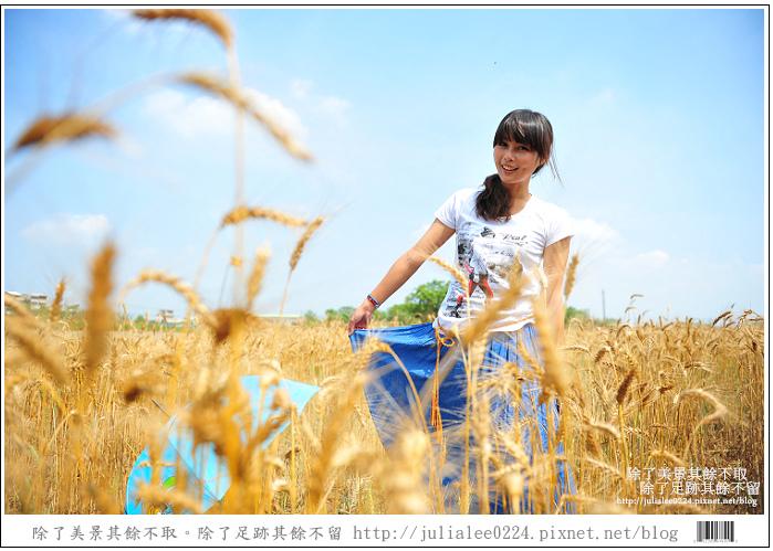 DSC_1562.jpg