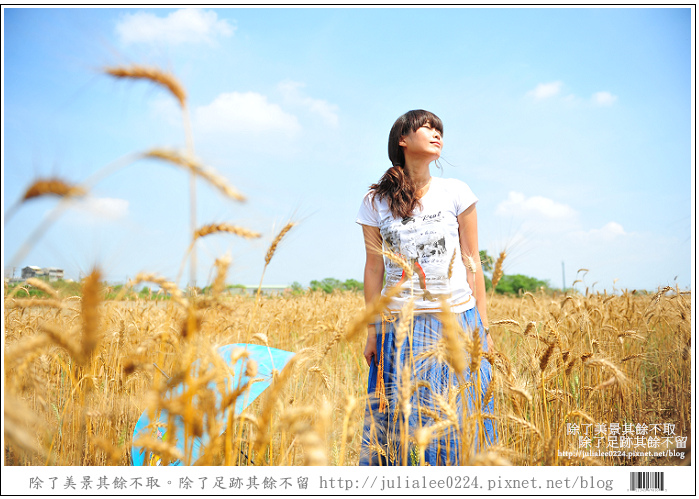 DSC_1564.jpg