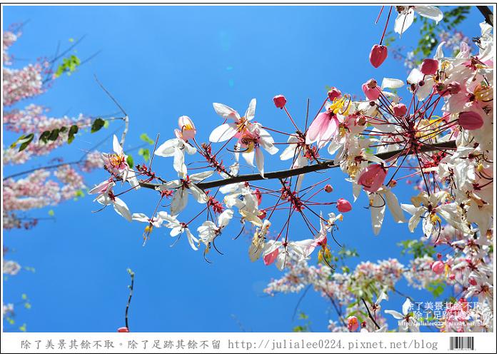 天台山 (57).jpg