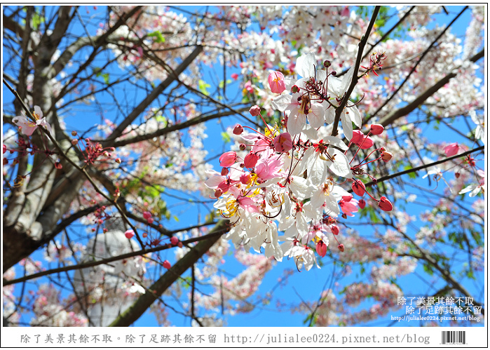 天台山 (64).jpg