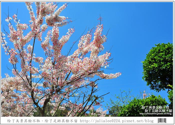 天台山 (65).jpg