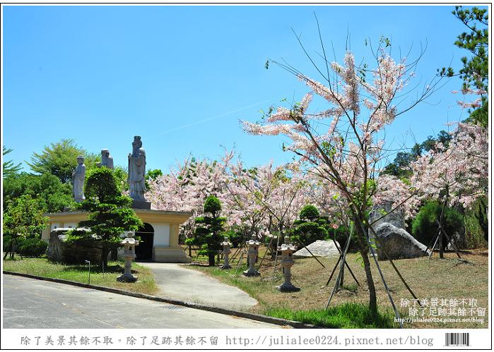 天台山 (70).jpg