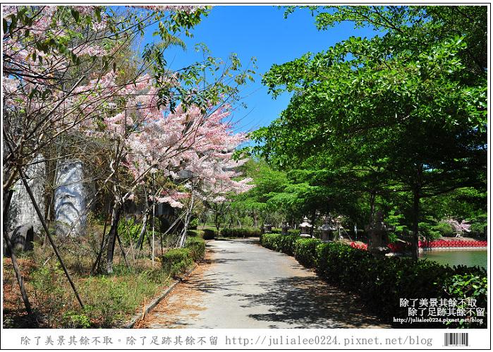 天台山 (72).jpg