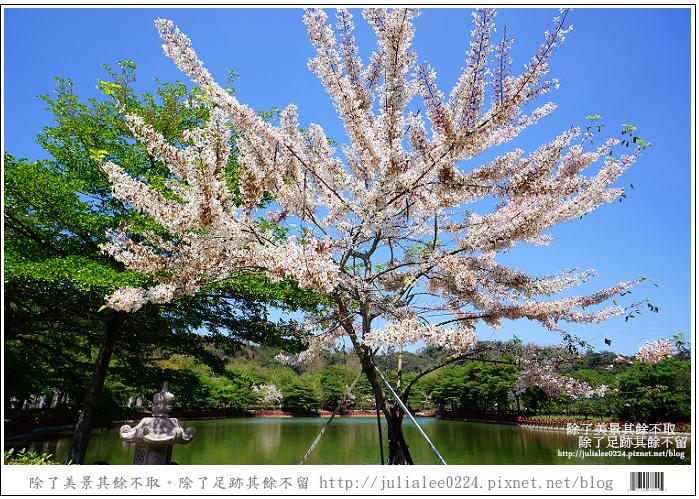 天台山 (73).jpg
