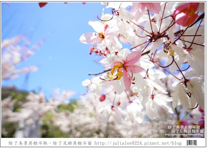 天台山 (82).jpg