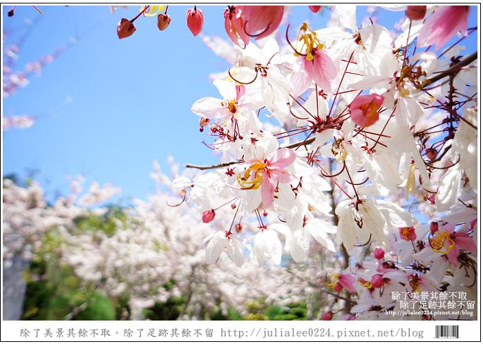 天台山 (83).jpg