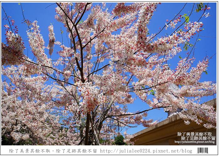 天台山 (85).jpg