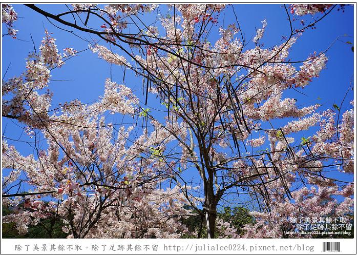 天台山 (88).jpg