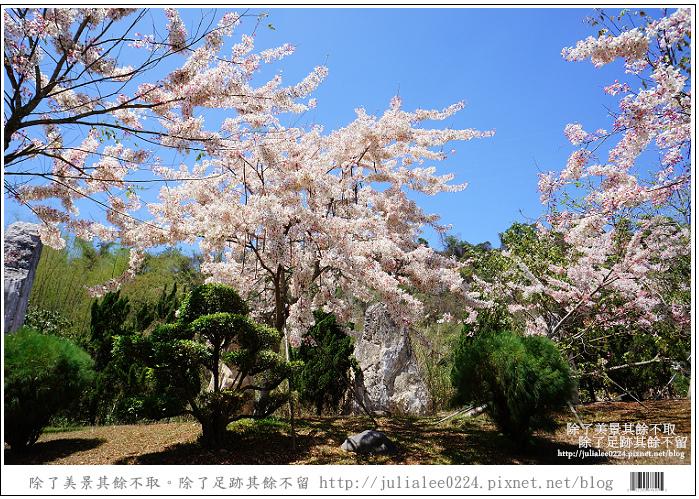 天台山 (90).jpg