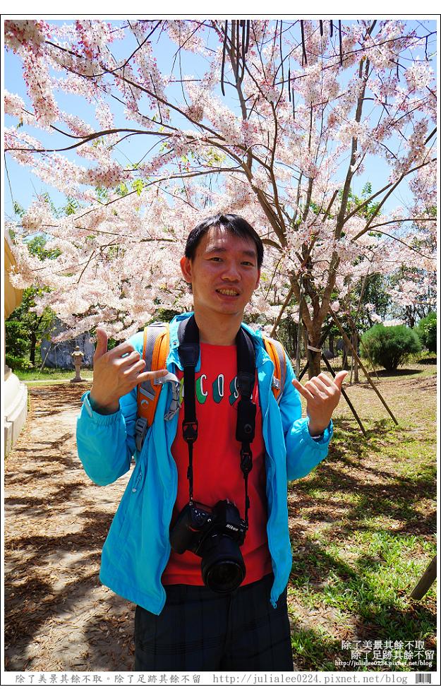 天台山 (91).jpg