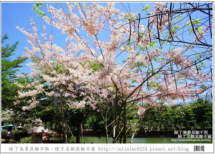 天台山 (94).jpg