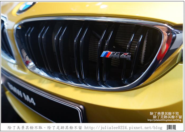 BMW (48)