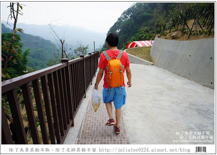 龍鳳瀑布空中步道 (47).jpg