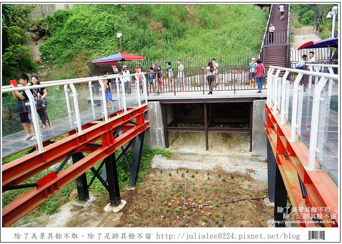 龍鳳瀑布空中步道 (77).jpg