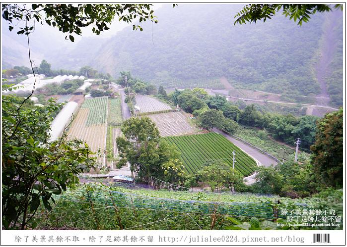 東埔溫泉 (48).jpg