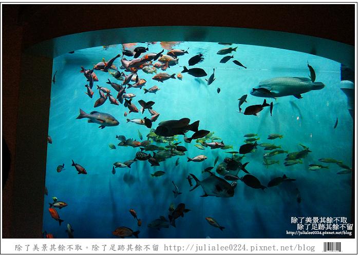 登別海洋公園尼克斯 (27)