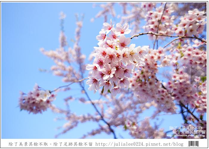 五陵郭 (81)