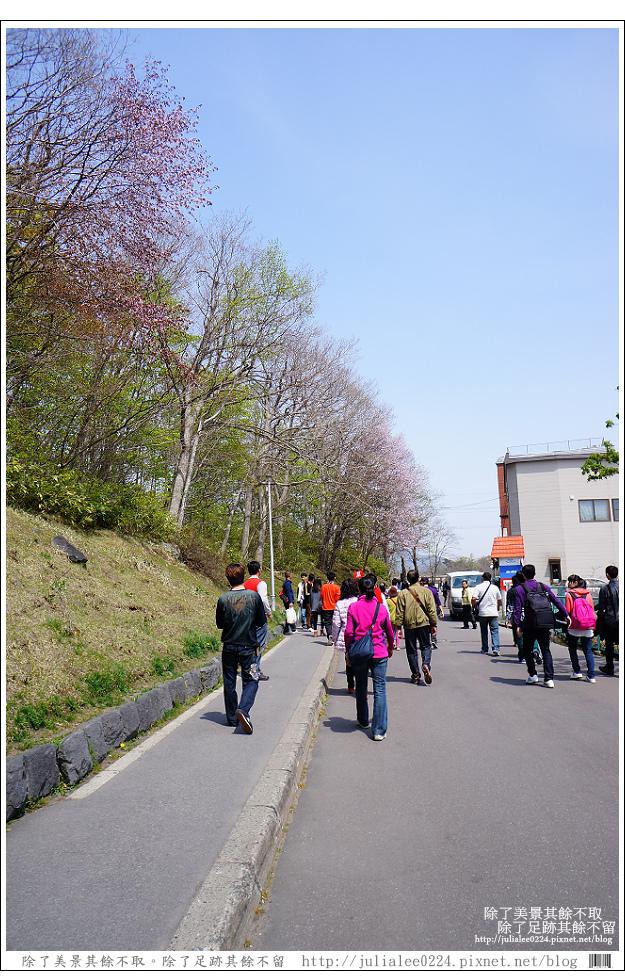 大沼國定公園 (15)