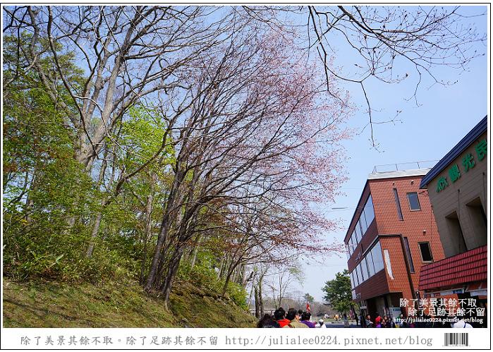 大沼國定公園 (17)