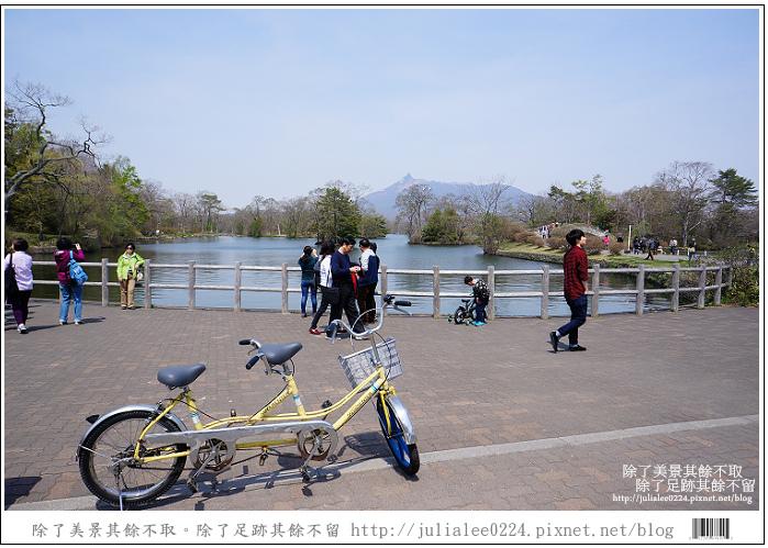 大沼國定公園 (59)