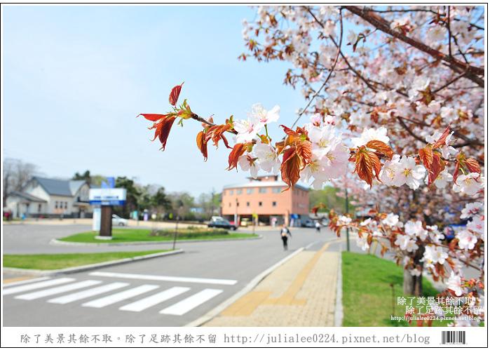 大沼國定公園 (72)