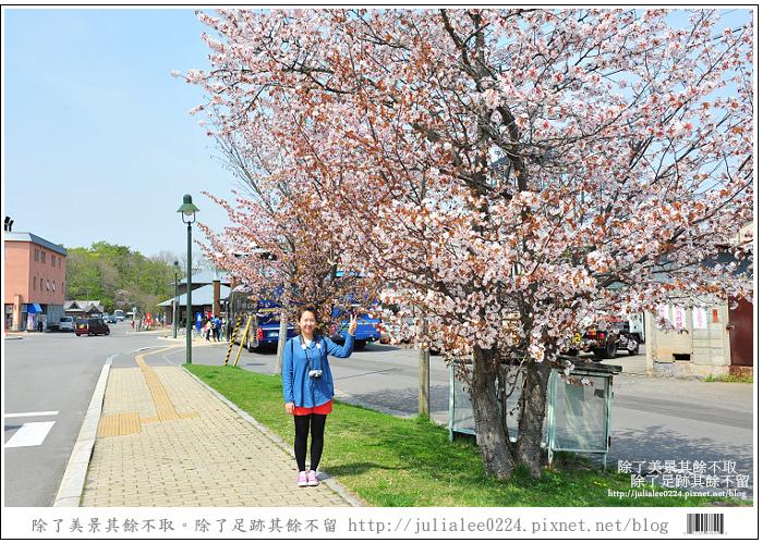 大沼國定公園 (74)