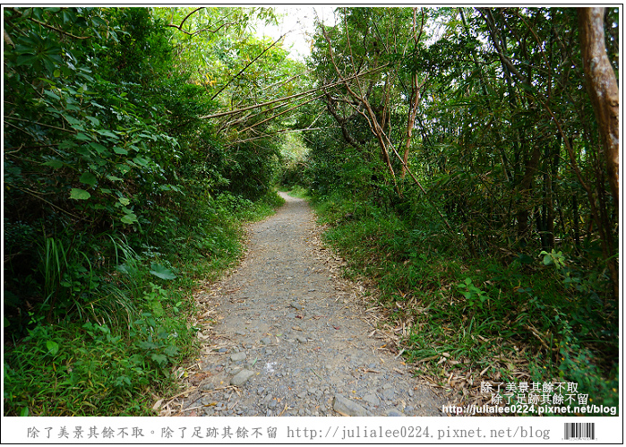 南仁湖 (5)