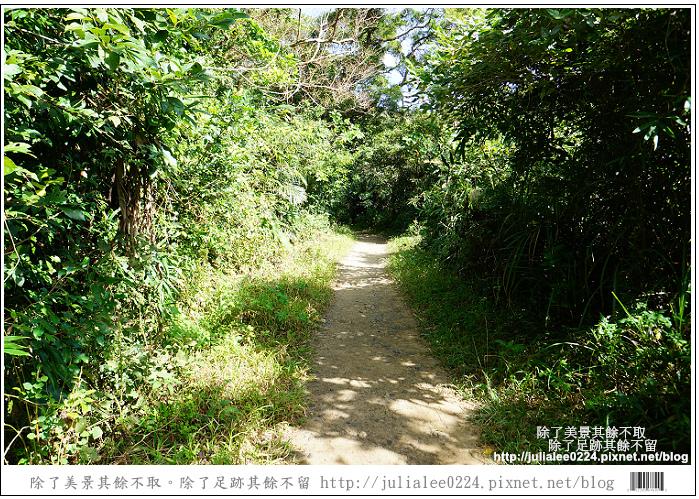 南仁湖 (8)