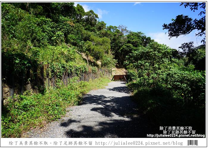 南仁湖 (9)