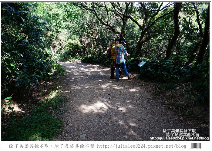 南仁湖 (12)