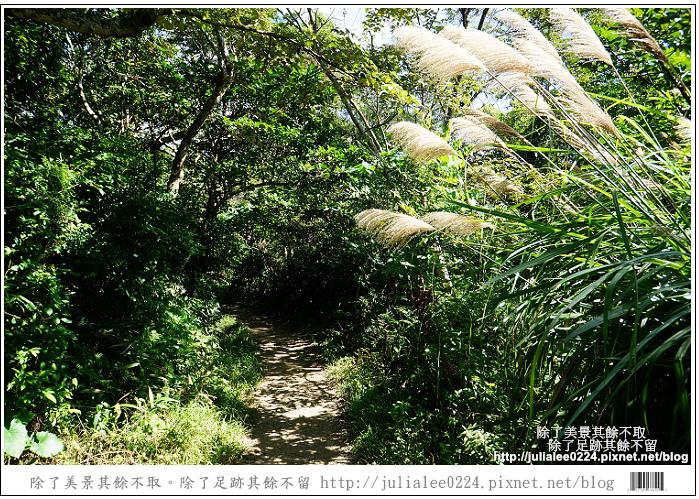 南仁湖 (14)